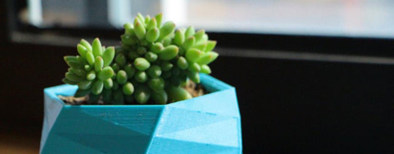 Je crée en 3D : accessoires de jardinage